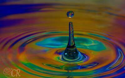 Water Drop Still Motion Photography